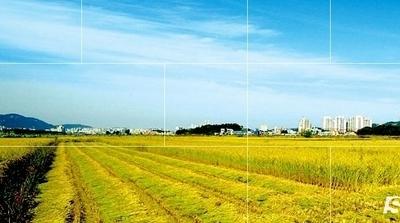 [기획] 쌀이 많이 나던 동네, '미산동(米山洞)'을 아십니까