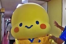 시흥시 캐릭터 해로·토로와 똑 닮은 아산FC 티티…혹시 의형제?